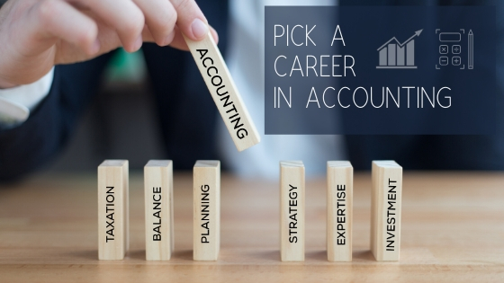 Ultimate Guide for a Career in Accounting