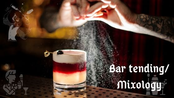 All You Need to Know About a Career in Bartending