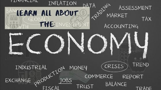 Here's Your No.1 Guide to start a career as an Economist