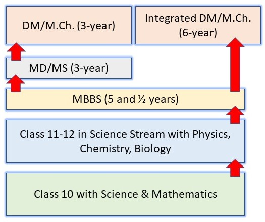 How to Become a Scientist in India: Pathway 10