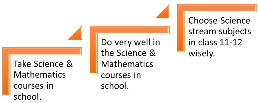 How to become a Scientist – the next 3 steps: what do you study in school?
